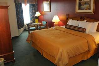 Standard King Room - Interior Room