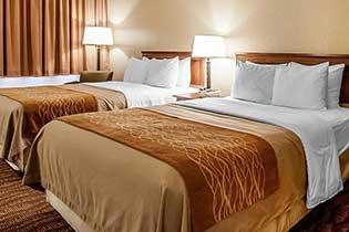 Standard Two Queen Beds Room