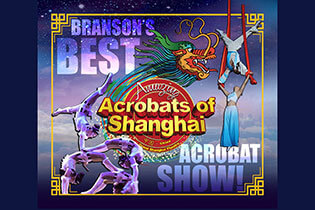 Photo of Amazing Acrobats of Shanghai
