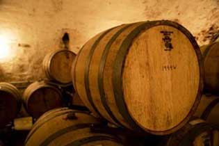 Mount Pleasant Winery Wine Class 101