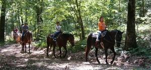Uncle Ike's Horseback Riding