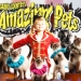 Amazing Pets in Branson, MO