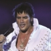 Tony Roi's Elvis and More in Branson, MO