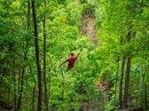 Shepherd of the Hills Zipline Canopy Tours