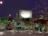 Andy Williams Ozark Mountain Christmas, Branson MO Shows (0)