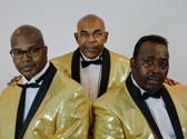 Doo Wop and the Drifters, Branson MO Shows (2)