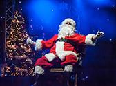 Christmas Wonderland, Branson MO Shows (0)
