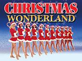 Christmas Wonderland, Branson MO Shows (1)