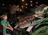 Branson Dinosaur Museum Photo #2