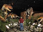 Branson Dinosaur Museum Photo #3