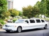 Branson Limousine Christmas Light Tour Photo #3