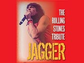 Jagger The Rolling Stones Concert Tribute